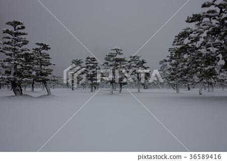 下雪的風景 36589416
