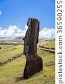 摩艾石像 拉诺拉拉库 复活节岛 36590255