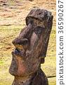 摩艾石像 拉诺拉拉库 复活节岛 36590267
