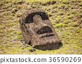 摩艾石像 拉诺拉拉库 复活节岛 36590269