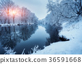 forest, snow, river 36591668