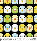 凤头鹦鹉 鹦鹉 金刚鹦鹉 36595494