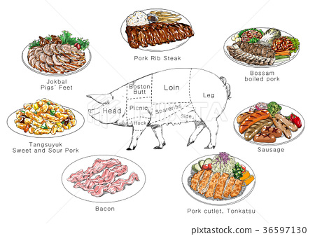 information of meat parts, RF illustration 008 36597130