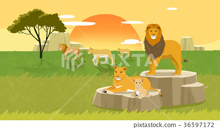 Peaceful wild animals, RF illustration 007 36597172