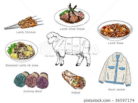 information of meat parts, RF illustration 006 36597174