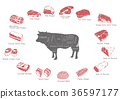 information of meat parts, RF illustration 001 36597177
