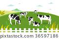 Peaceful wild animals, RF illustration 002 36597186