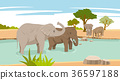 Peaceful wild animals, RF illustration 004 36597188
