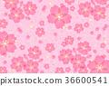 cherry blossom, cherry tree, sakura 36600541