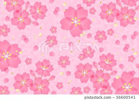 樱桃树 36600541