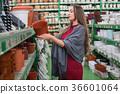 woman, flowerpot, choice 36601064
