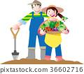 矢量 菜园 丰收 36602716