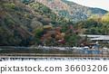 Uniquely Japan. Arashiyama.  36603206