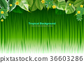 Bright tropical background with jungle plants. 36603286