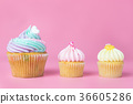 Rainbow pastel cupcakes mini cupcakes on pink  36605286