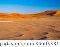 Sand dunes in the Namib desert 36605581