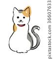 雜色貓 毛孩 貓 36607633