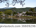 daikakuji temple, osawa-no-ike pond, cherry blossom 36609296