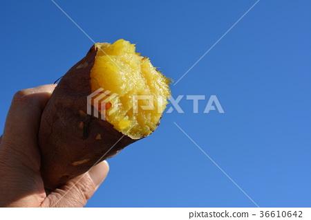 Blue sky, sweet potato 36610642