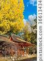 kitano shrine, kitano tenman-gu, clear sky 36613434