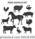animal silhouette horse 36626168