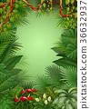 Tropical jungle background 36632937