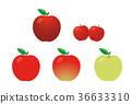 vector, vectors, fruit 36633310