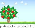 vector, vectors, fruit 36633313