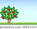 vector, vectors, fruit 36633314
