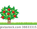 vector, vectors, fruit 36633315