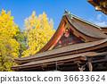 kitano shrine, kitano tenman-gu, ginkgo 36633624