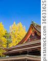 kitano shrine, kitano tenman-gu, ginkgo 36633625
