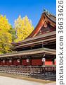 kitano shrine, kitano tenman-gu, ginkgo 36633626