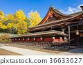 kitano shrine, kitano tenman-gu, ginkgo 36633627