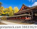 kitano shrine, kitano tenman-gu, ginkgo 36633629