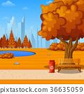 Autumn city park with bench under big tree 36635059