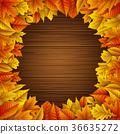 잎, 가을, 단풍 36635272