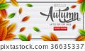 autumn, sale, banner 36635337