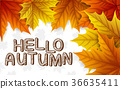 잎, 배경, 벡터 36635411