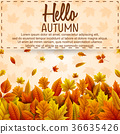 Hello autumn banner template 36635426