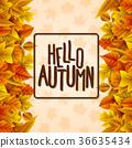 秋天 秋 十月 36635434
