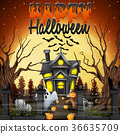 Scary Halloween background 36635709