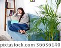 독서, 휴식, 실내 36636140