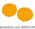 mandarin orange, fruit, fruits 36636198