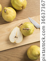 pear, le lectier, cross-section 36637367
