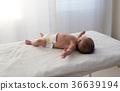 嬰兒 寶寶 寶貝 36639194