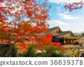 kitano shrine, kitano tenman-gu, clear sky 36639378