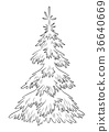 Christmas Fir Tree Contours 36640669