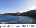 파도, 바다, 해변 36642965