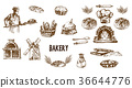 bakery vector wheat 36644776
